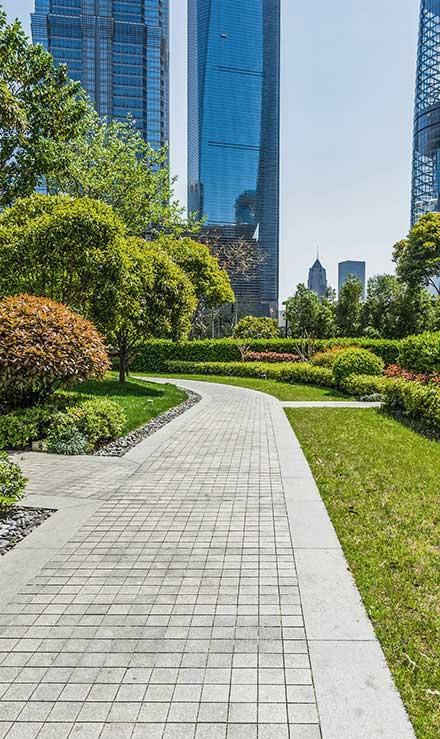 Losey's Lawn & Landscape, Inc. Landscaping