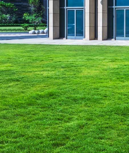Losey's Lawn & Landscape, Inc. Aeration