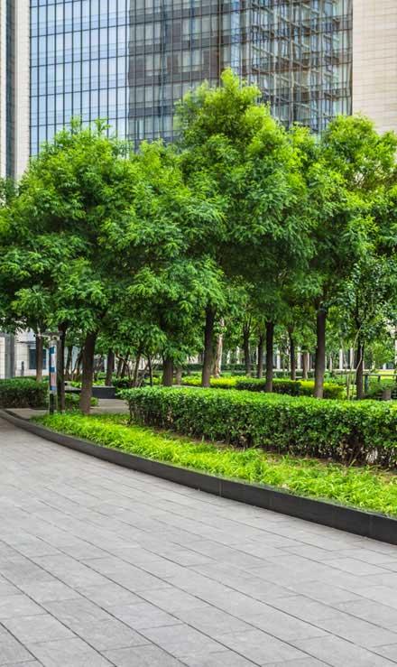 Losey's Lawn & Landscape, Inc. Commercial Grounds Maintenance