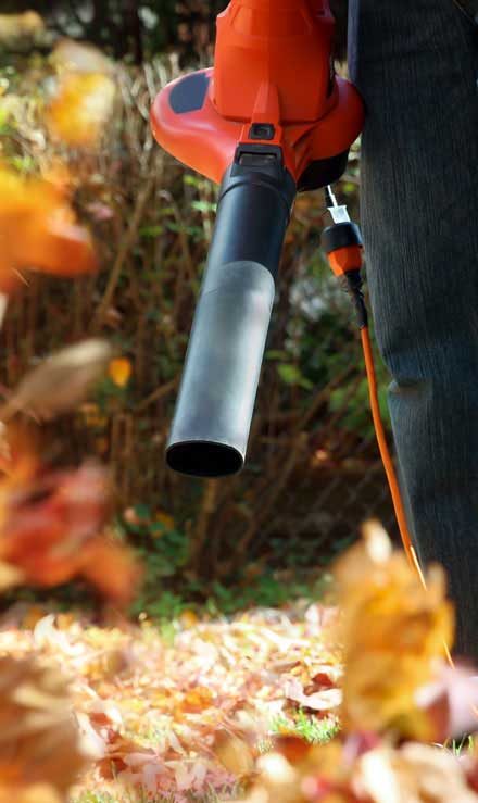 Losey's Lawn & Landscape, Inc. Leaf Removal