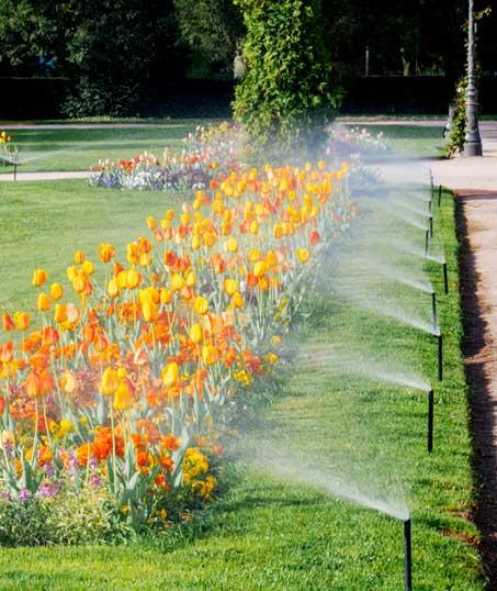 Losey's Lawn & Landscape, Inc. Sprinkler Blowout