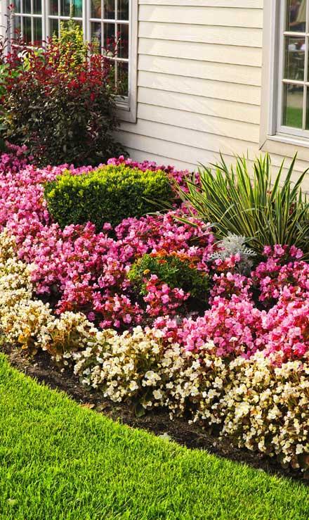 Losey's Lawn & Landscape, Inc. Garden Design