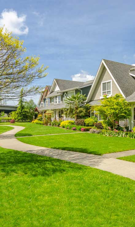 Losey's Lawn & Landscape, Inc. Residential Lawn Care