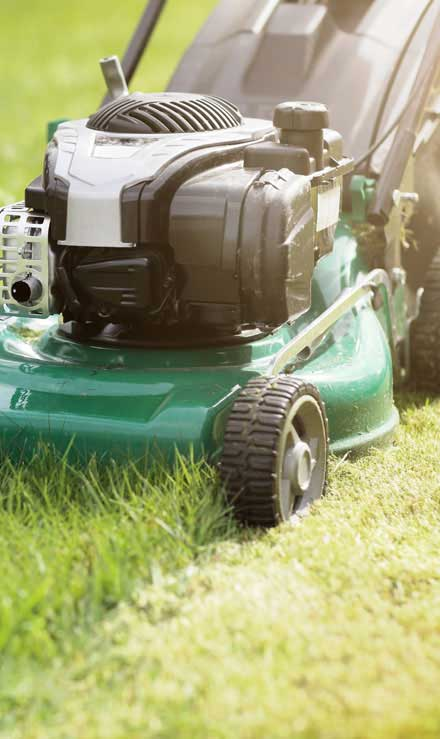Losey's Lawn & Landscape, Inc. Residential Lawn Mowing